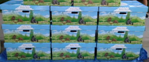 Colorado Baby Boxes stack